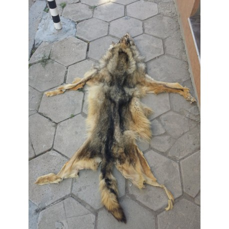 Gray wolf pelt - handmade leather rug